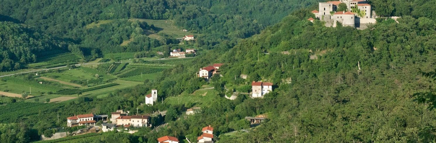 노바 고리차, 슬로베니아
