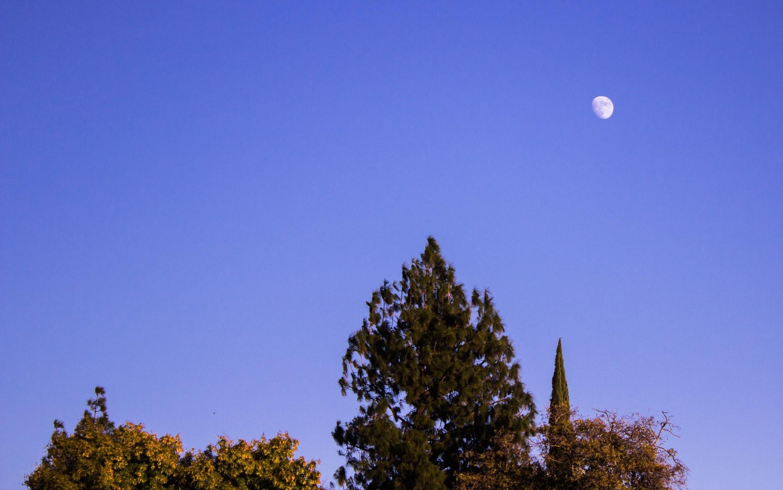 Northridge, California, United States of America