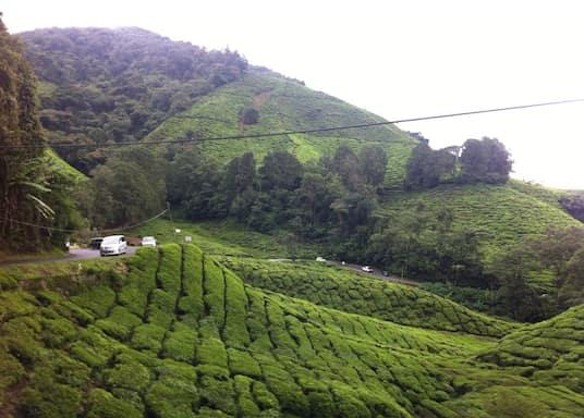 Ulu Telom, Malaysia