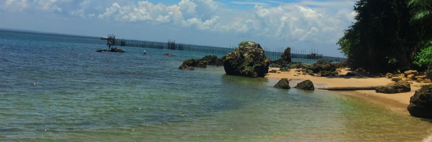 גמבואה, ברזיל