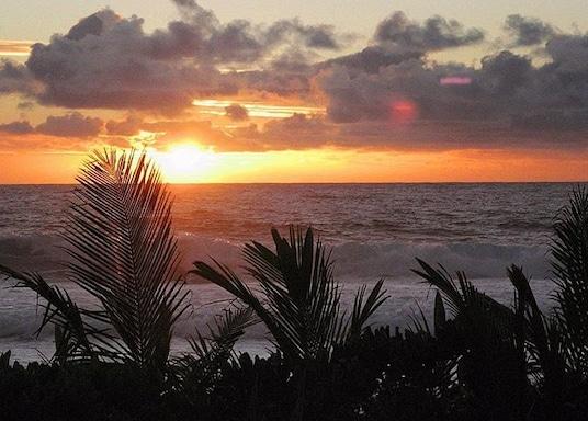 Rarotonga, Pulau Cook