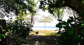 Playa Agujas (Agujas Plajı)