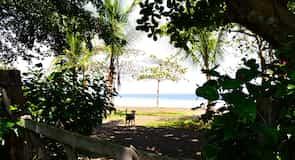 Playa Agujas
