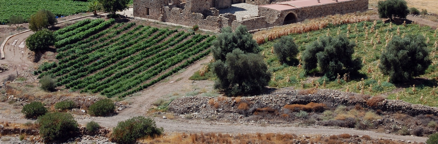 Pentalia, Cypern