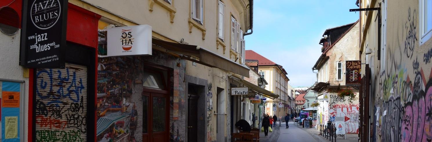 リューブリャナ, スロベニア