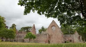 Dryburgh Abbey (klosteris)