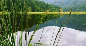 Kleine Arbersee