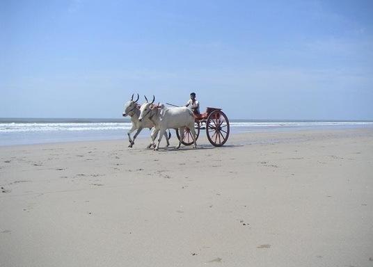 Ganpatipule, Indien