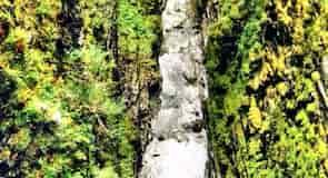 Corrieshalloch Gorge (tiesňava)