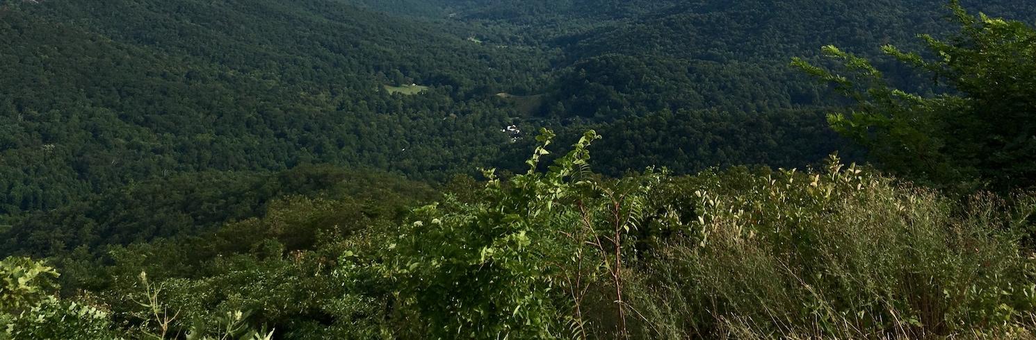 Greene County, Virginia, Verenigde Staten