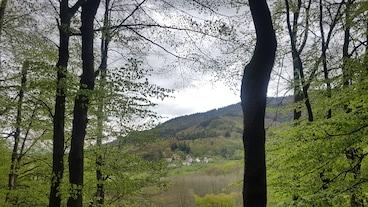 Badenweiler/