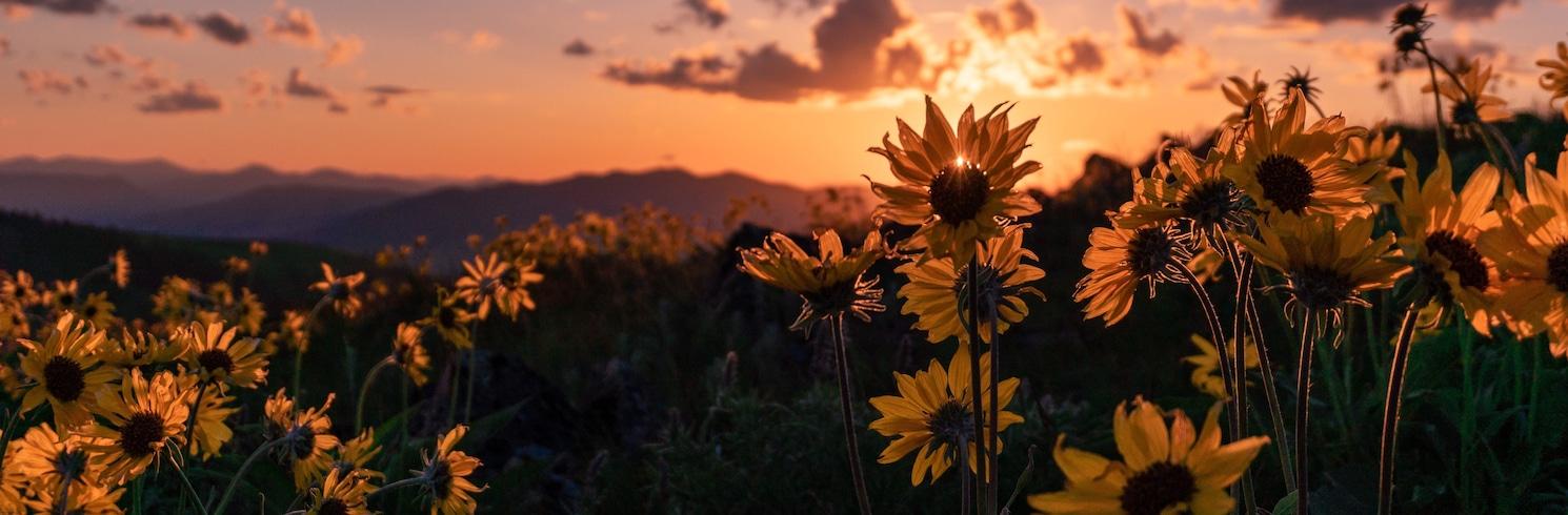 تشارلو, مونتانا, الولايات المتحدة