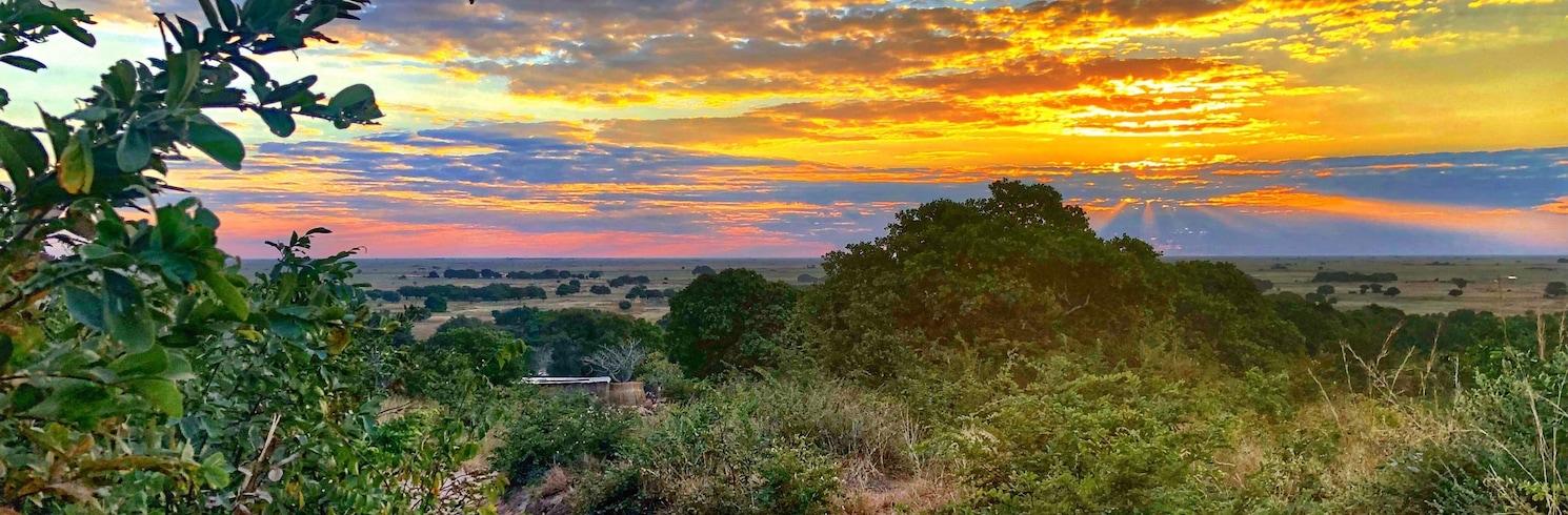 Монгу, Замбія