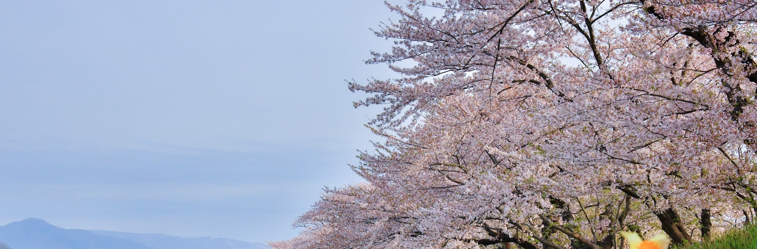 Senboku, Japán