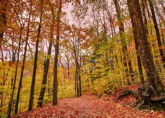 Franconia, New Hampshire, Estados Unidos