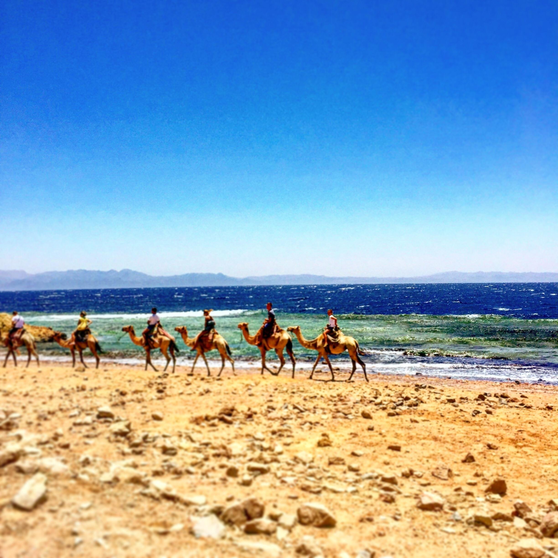 Dahab, South Sinai Governorate, Egypt