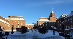 Kuninkaallinen teknillinen korkeakoulu (Kungliga Tekniska högskolan)