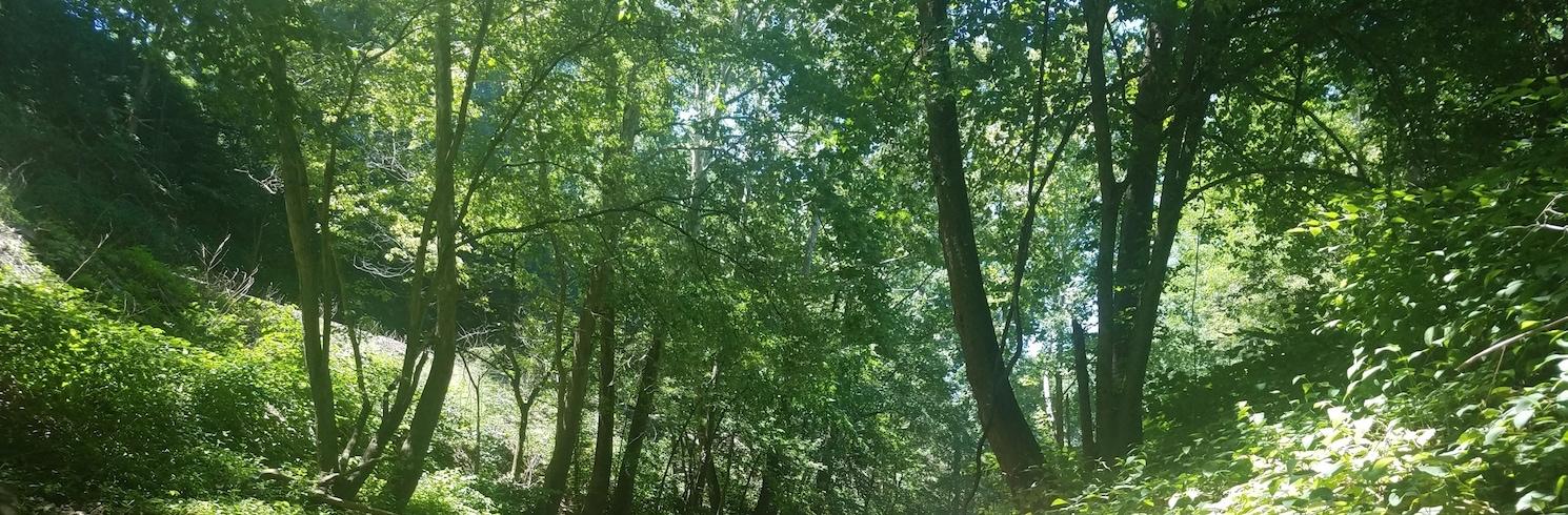 גרינסברג (והסביבה), פנסילבניה, ארצות הברית