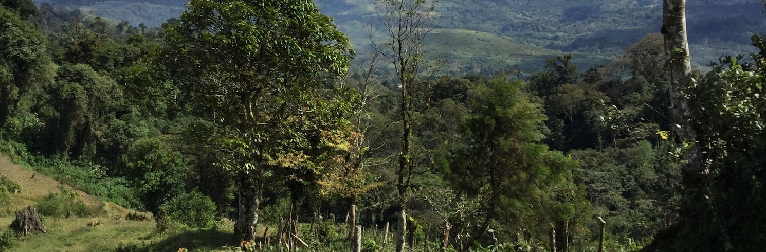 希諾特加 (省), 希諾特加 (省), 尼加拉瓜