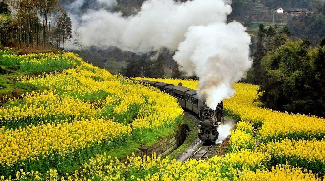 相片由 Beautiful Guangxi 提供