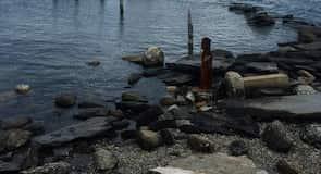Parque estatal de Rocky Point