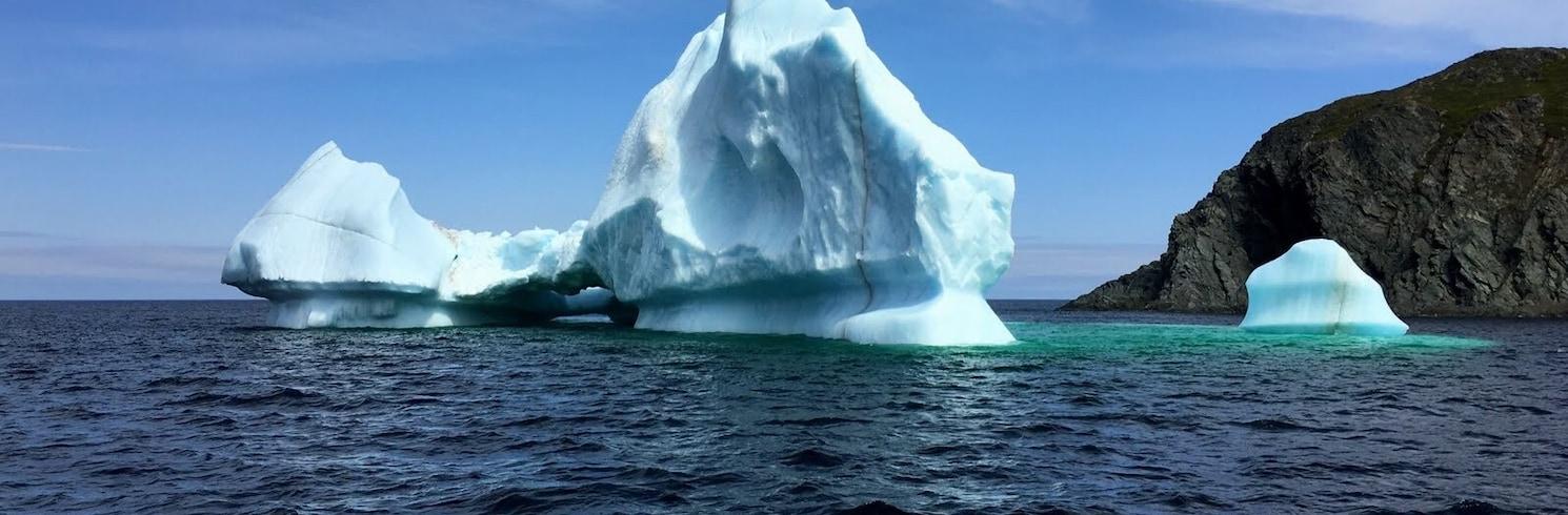 Twillingate, Newfoundland og Labrador, Canada