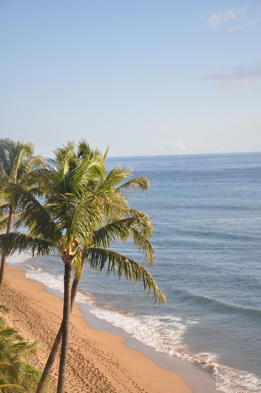 Maui Kai, Lahaina, Hawaii, United States of America