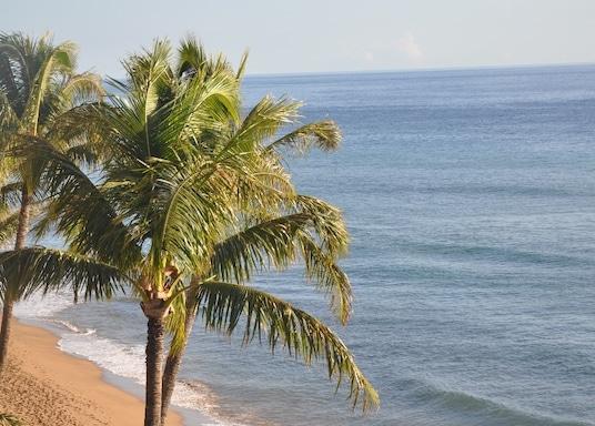 卡纳帕里, 夏威夷, 美国