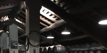 Balsamic vinegar ageing in the barrels in one of oldest producers in Modena. #merch