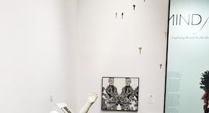 Fuller El Sanatları Müzesi