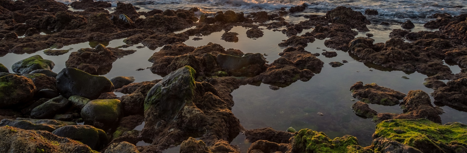 Palm-Mar, Spain