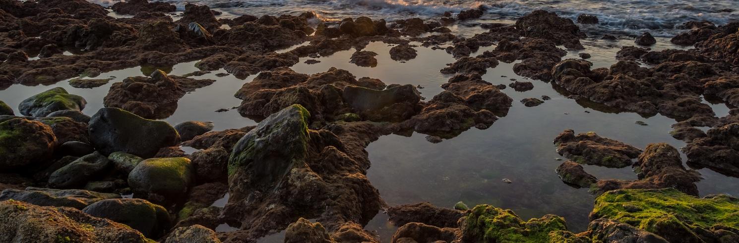 Palm-Mar, España