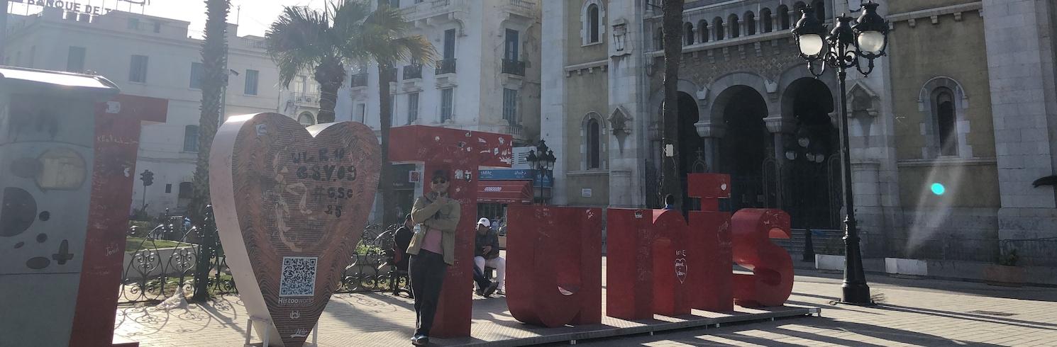 突尼斯, 突尼西亞