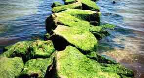 Pelabuhan Harwich
