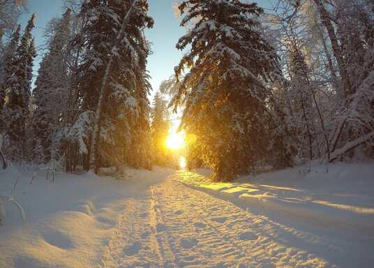 كوليدج, ألاسكا, الولايات المتحدة