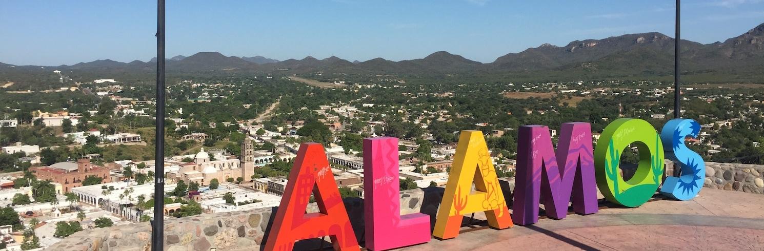 Alamos, Mexique