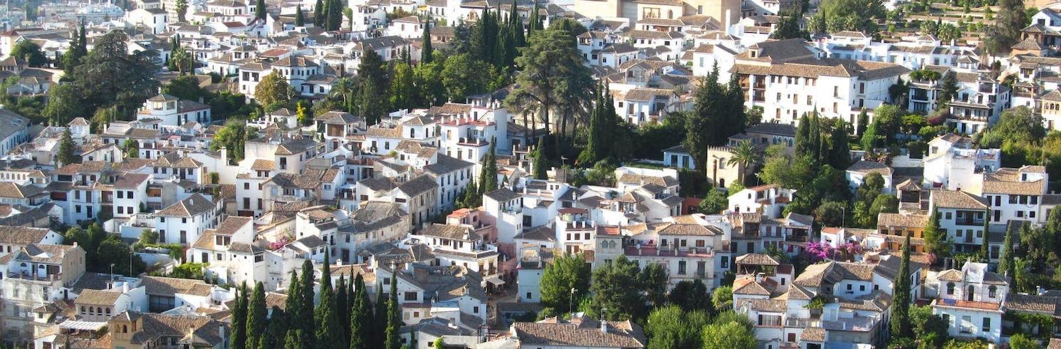 雷阿萊霍-聖馬蒂亞斯, 西班牙