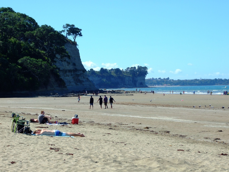 Long Bay Regional Park, Auckland, Auckland Region, Neuseeland