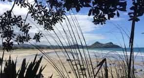 Pauanui Beach (playa)