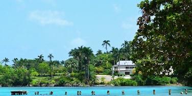 New Buckfield, Ocho Rios, Saint Ann, Jamaïque