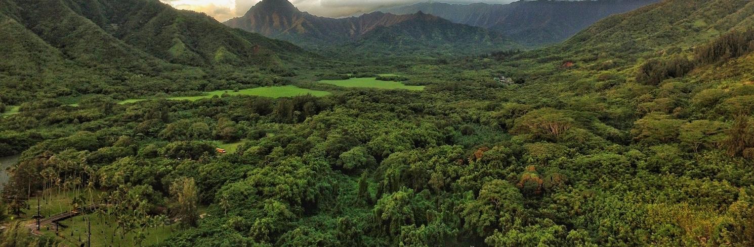 קהאנה, הוואי, ארצות הברית