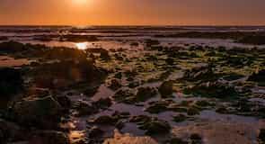 Пляж Брава