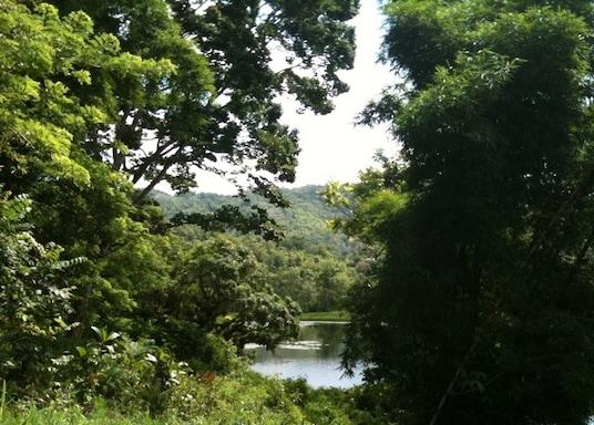 Darliston, Jamaíka