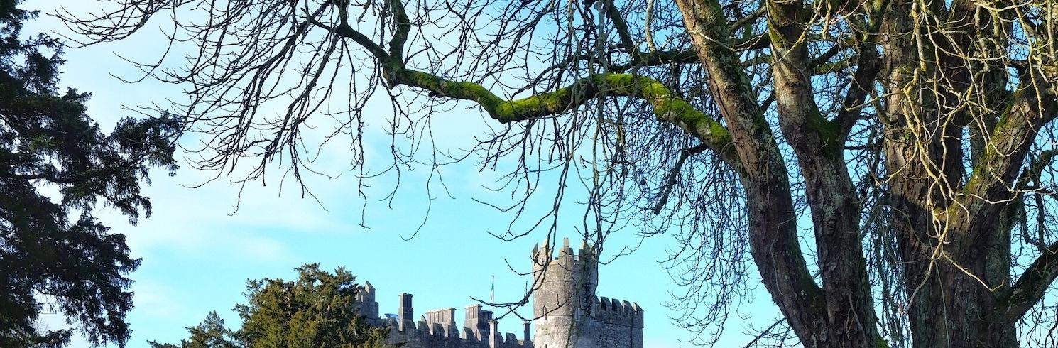 基爾吉亞, 愛爾蘭