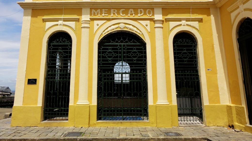 相片由 Sérgio Veludo 提供