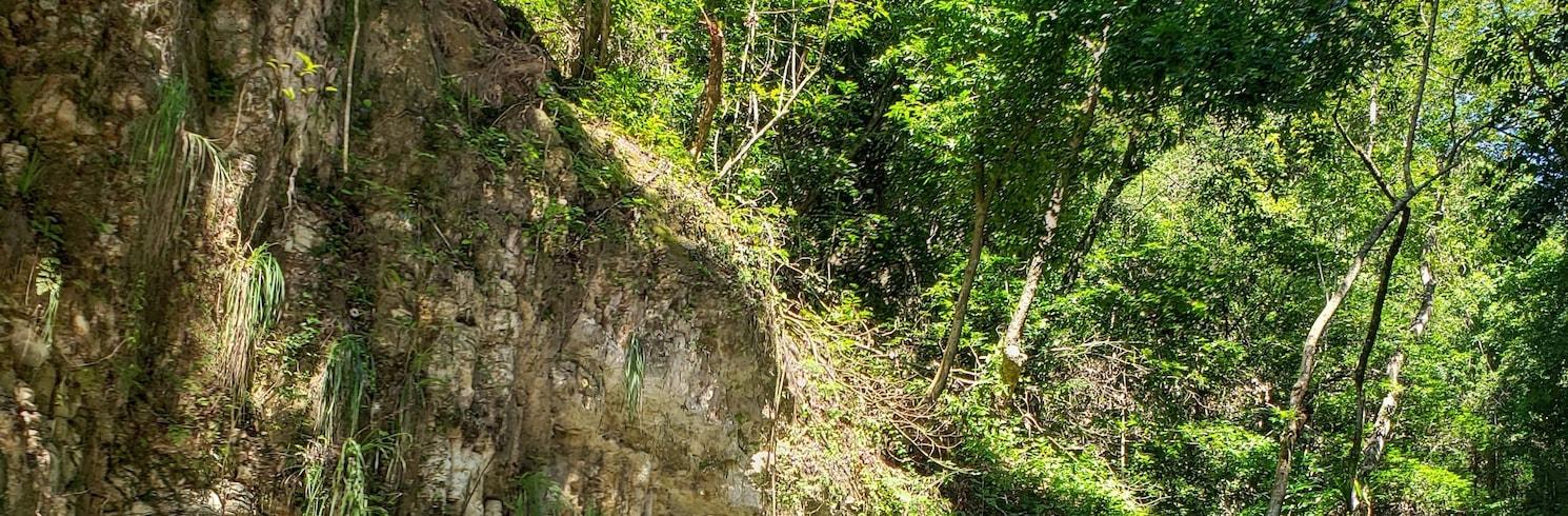 达马捷瓜, 多米尼加共和国