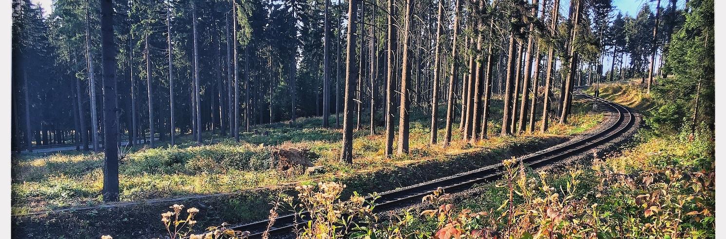 دراي آنين هوهن, ألمانيا