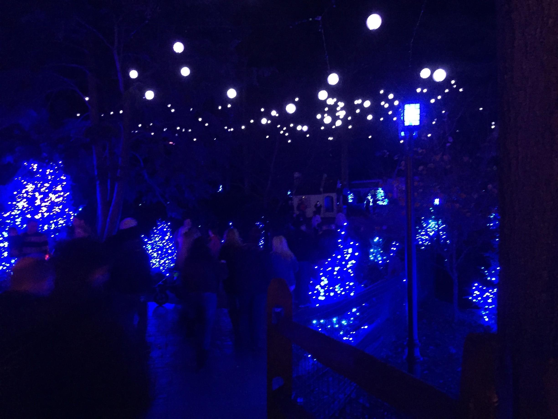 Busch Gardens, Williamsburg