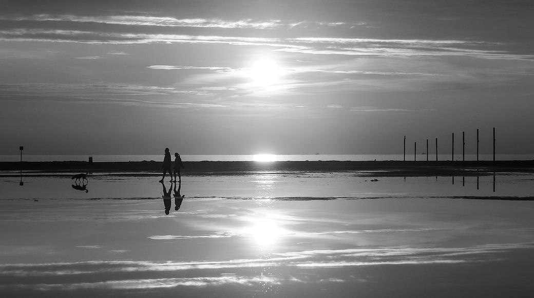 Foto von Nando Meckel