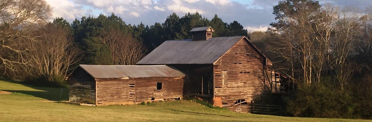 Taylor County, Georgia, Birleşik Devletler